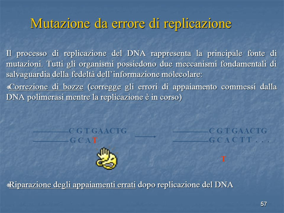 Mutazione da errore di replicazione