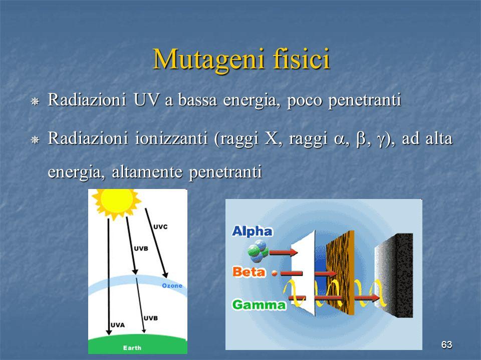 Mutageni fisici Radiazioni UV a bassa energia, poco penetranti