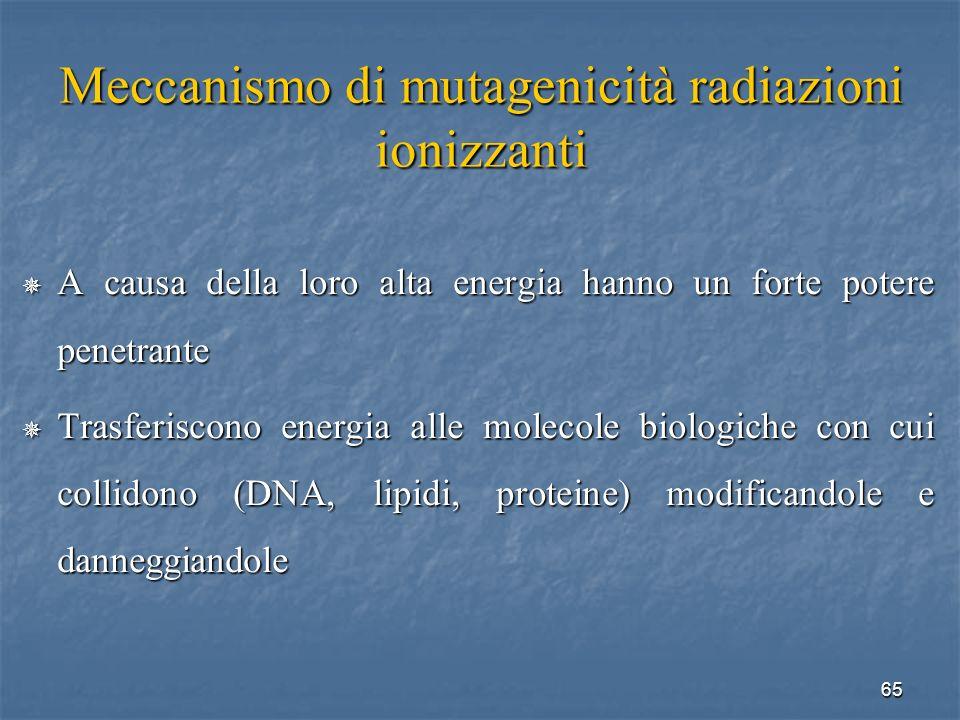 Meccanismo di mutagenicità radiazioni ionizzanti