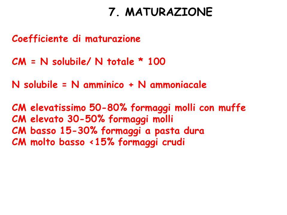 7. MATURAZIONE Coefficiente di maturazione