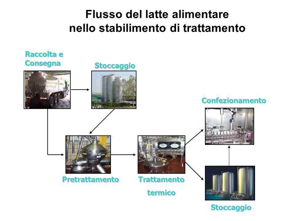 Flusso del latte alimentare nello stabilimento di trattamento