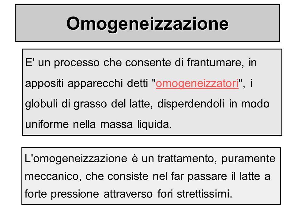 Omogeneizzazione
