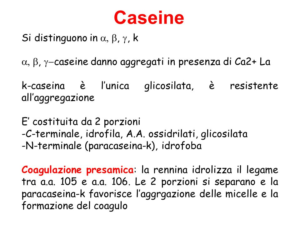 Caseine Si distinguono in a, b, g, k