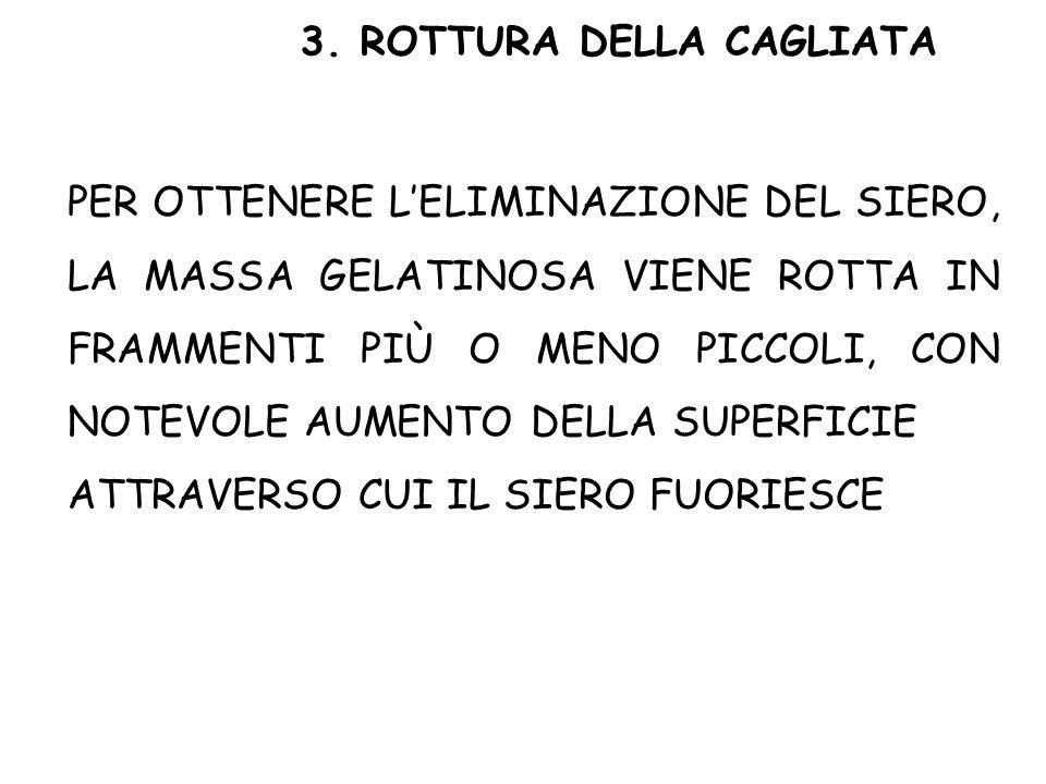 3. ROTTURA DELLA CAGLIATA