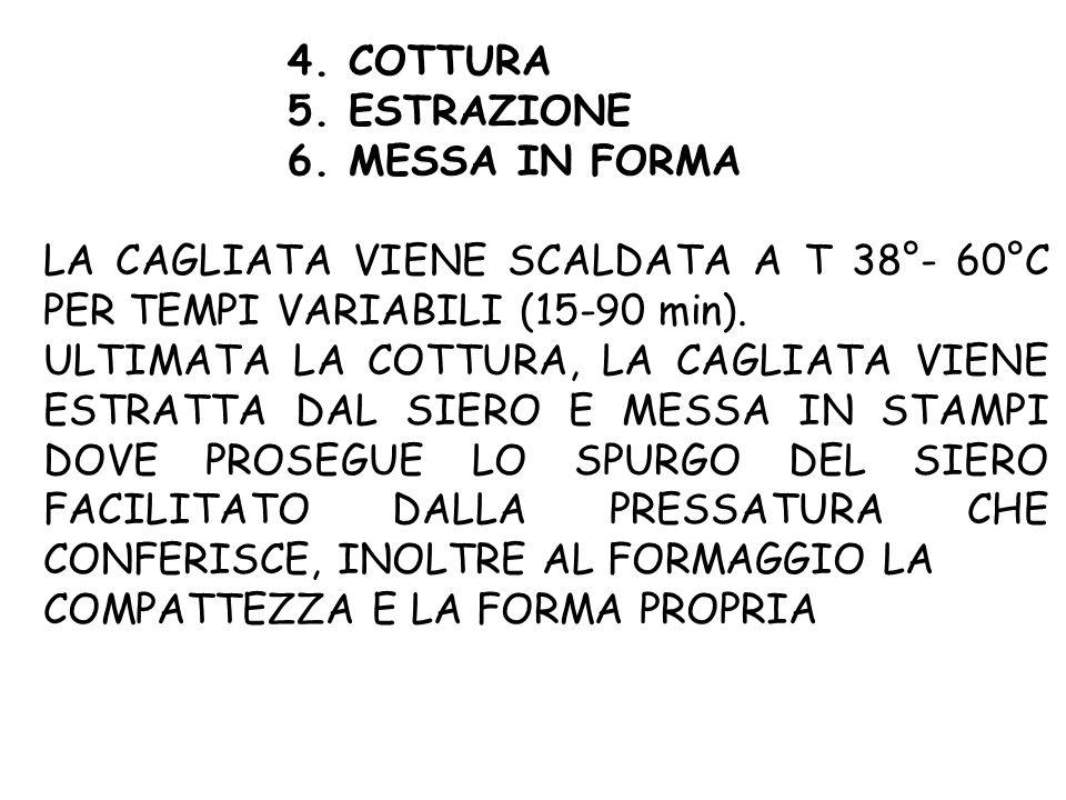 4. COTTURA 5. ESTRAZIONE. 6. MESSA IN FORMA. LA CAGLIATA VIENE SCALDATA A T 38°- 60°C PER TEMPI VARIABILI (15-90 min).