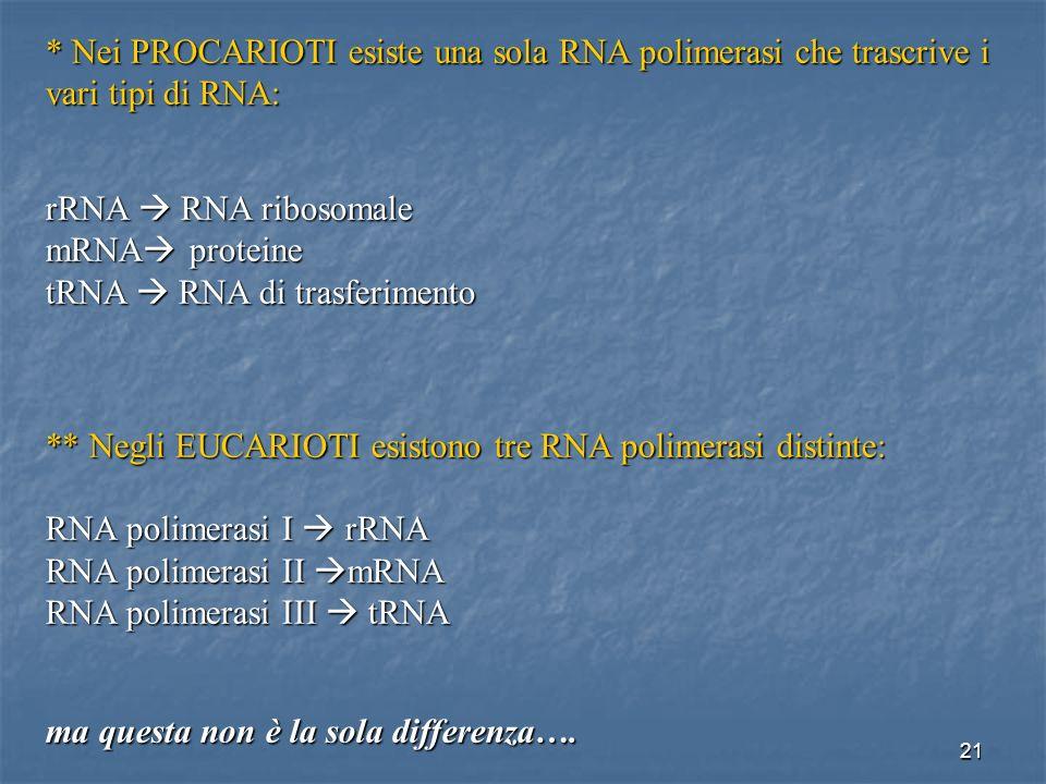 * Nei PROCARIOTI esiste una sola RNA polimerasi che trascrive i vari tipi di RNA: