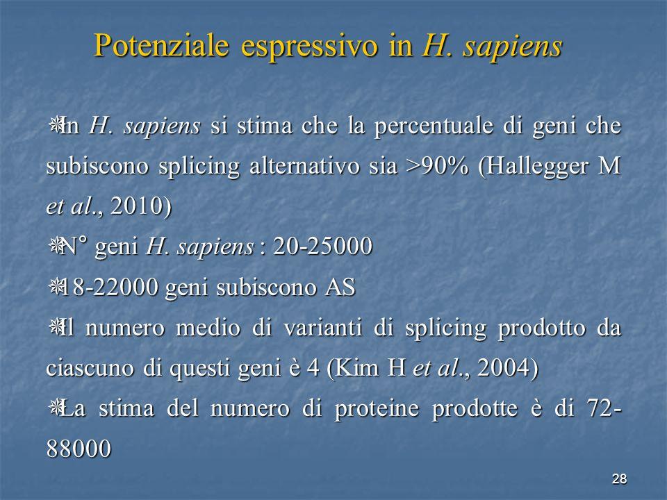 Potenziale espressivo in H. sapiens