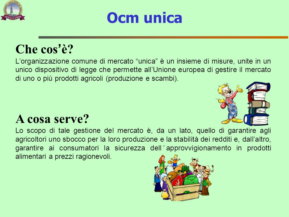 Ocm unica Che cos'è A cosa serve