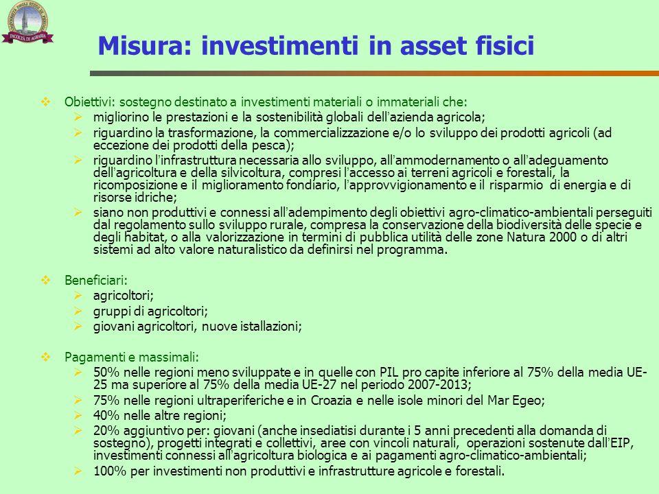 Misura: investimenti in asset fisici