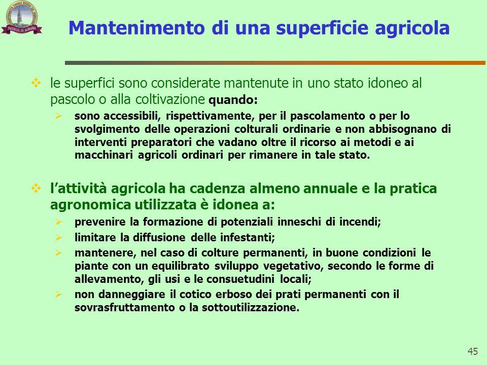 Mantenimento di una superficie agricola