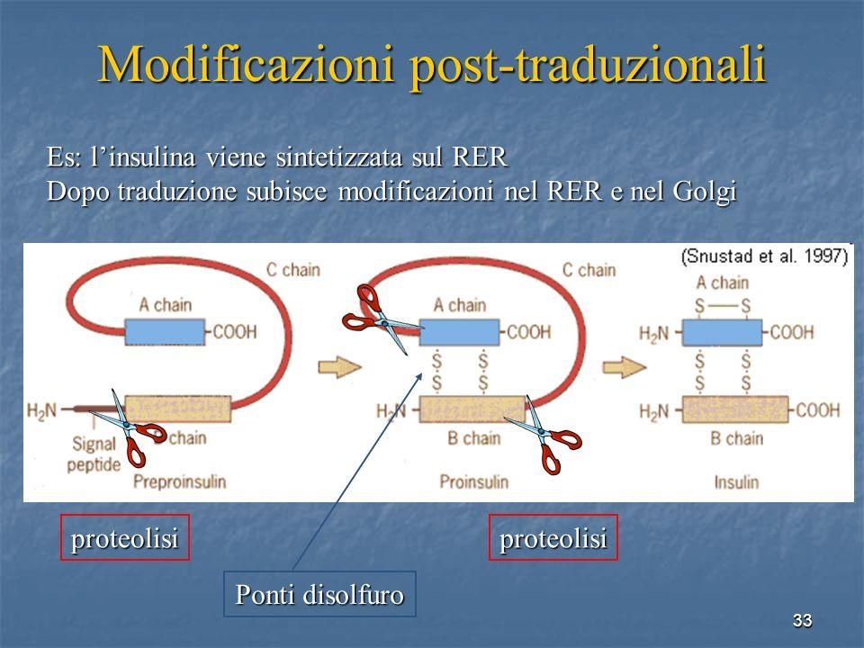 Modificazioni post-traduzionali