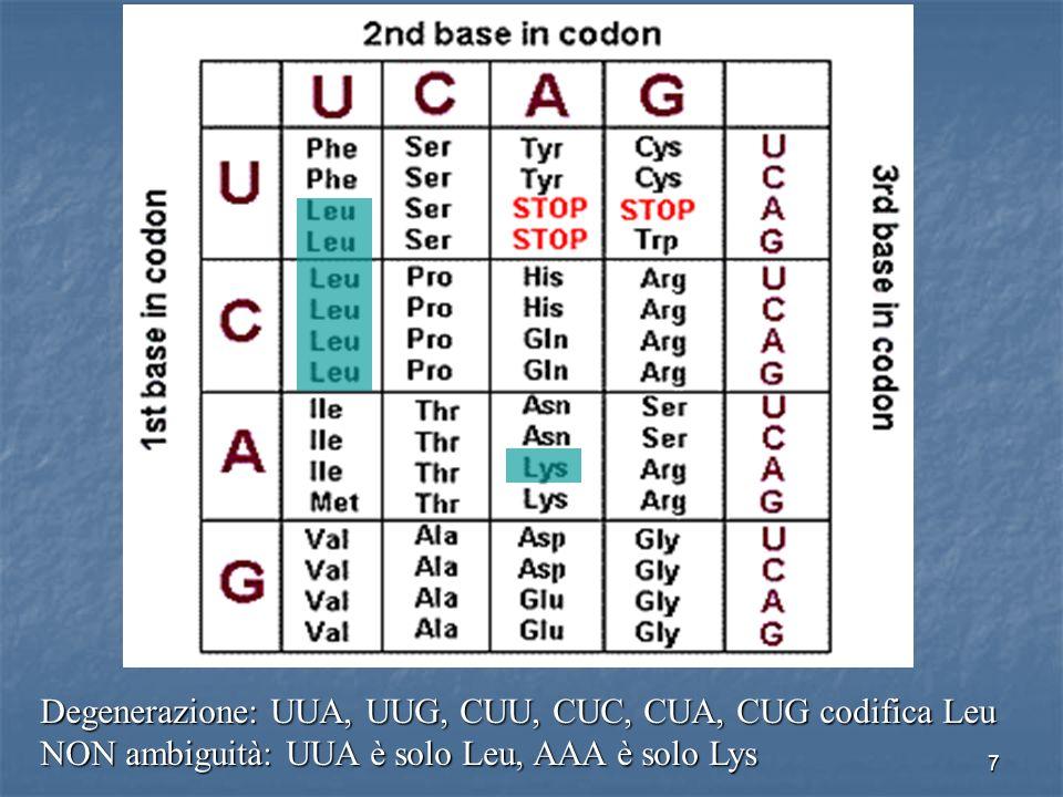 Degenerazione: UUA, UUG, CUU, CUC, CUA, CUG codifica Leu