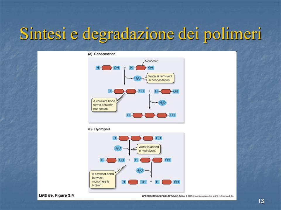 Sintesi e degradazione dei polimeri