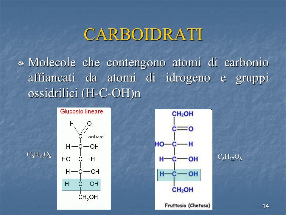 CARBOIDRATI Molecole che contengono atomi di carbonio affiancati da atomi di idrogeno e gruppi ossidrilici (H-C-OH)n.