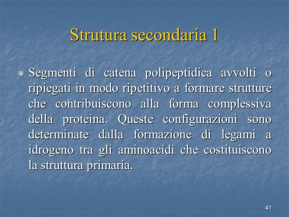 Strutura secondaria 1