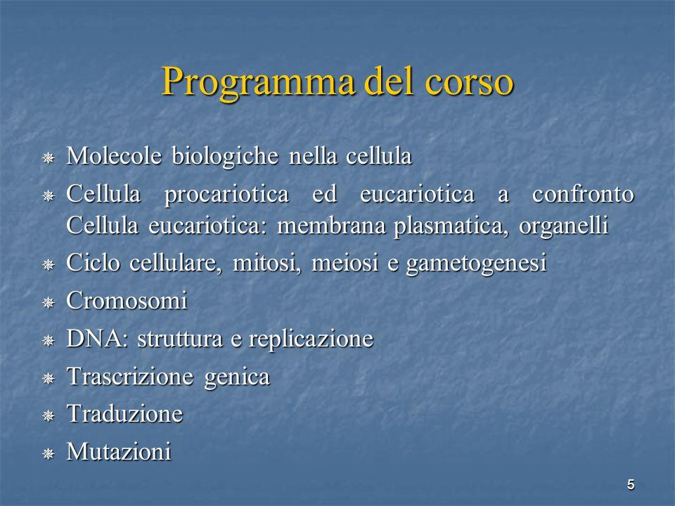 Programma del corso Molecole biologiche nella cellula