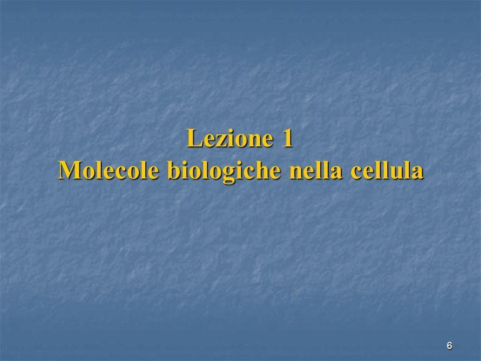 Lezione 1 Molecole biologiche nella cellula