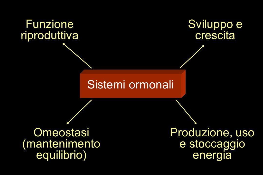 (mantenimento equilibrio) Produzione, uso e stoccaggio energia