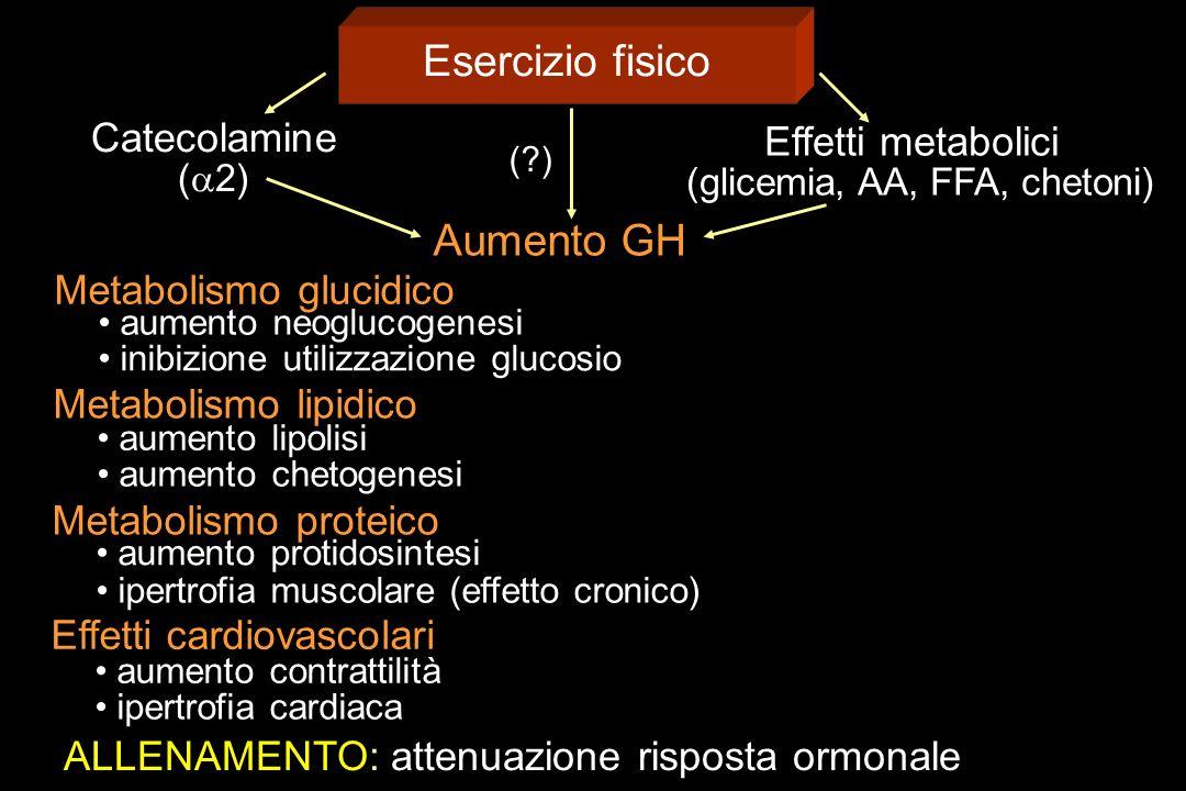 (glicemia, AA, FFA, chetoni)