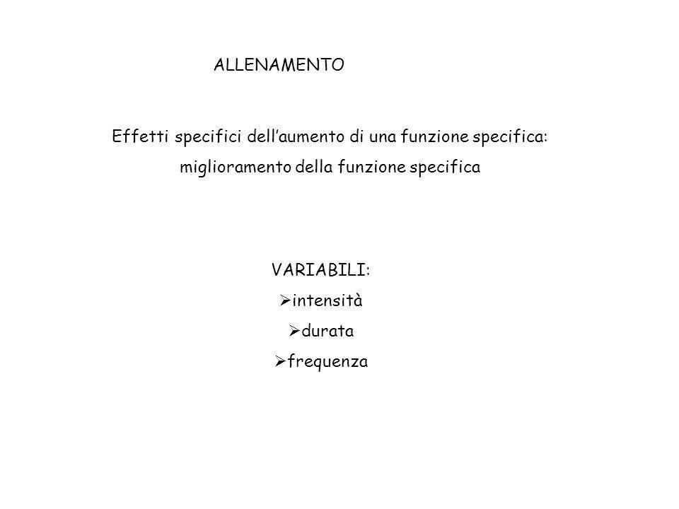 ALLENAMENTO (TRAINING)