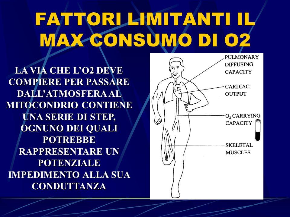 FATTORI LIMITANTI IL MAX CONSUMO DI O2