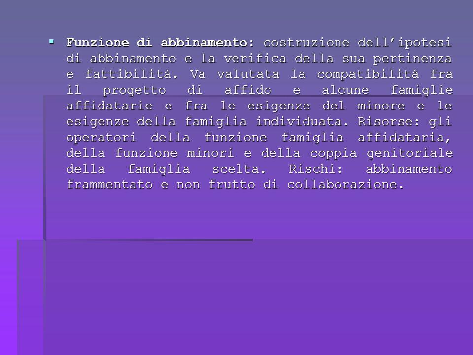 Funzione di abbinamento: costruzione dell'ipotesi di abbinamento e la verifica della sua pertinenza e fattibilità.