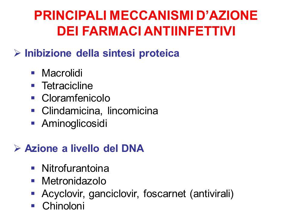 PRINCIPALI MECCANISMI D'AZIONE DEI FARMACI ANTIINFETTIVI