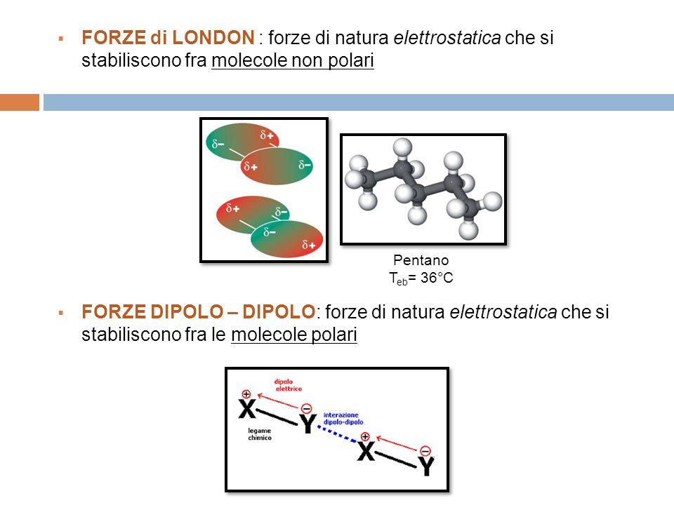 FORZE di LONDON : forze di natura elettrostatica che si stabiliscono fra molecole non polari