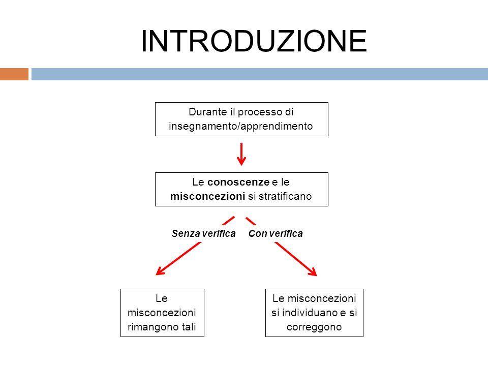 INTRODUZIONE Durante il processo di insegnamento/apprendimento