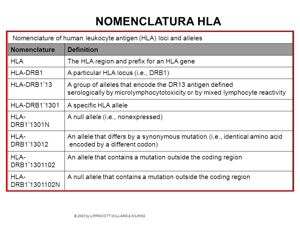 NOMENCLATURA HLA © 2003 by LIPPINCOTT WILLIAMS & WILKINS