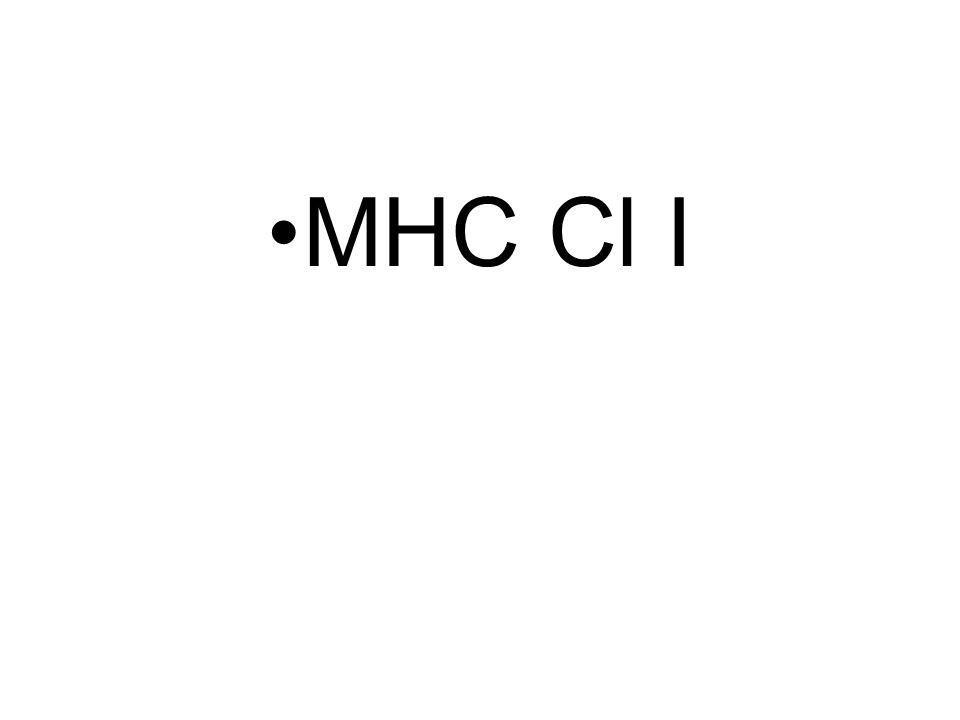 MHC Cl I