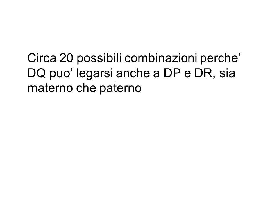 Circa 20 possibili combinazioni perche' DQ puo' legarsi anche a DP e DR, sia materno che paterno