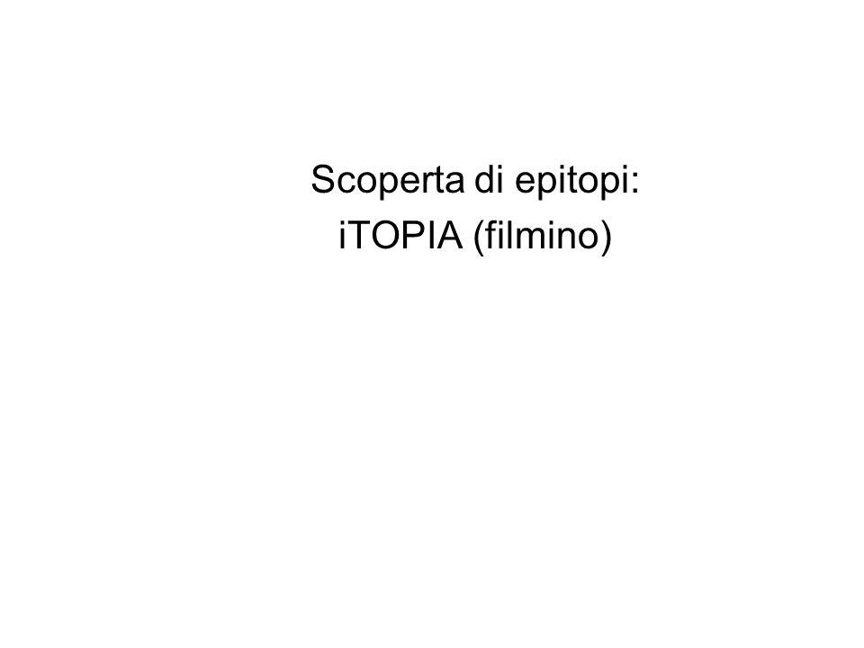 Scoperta di epitopi: iTOPIA (filmino)