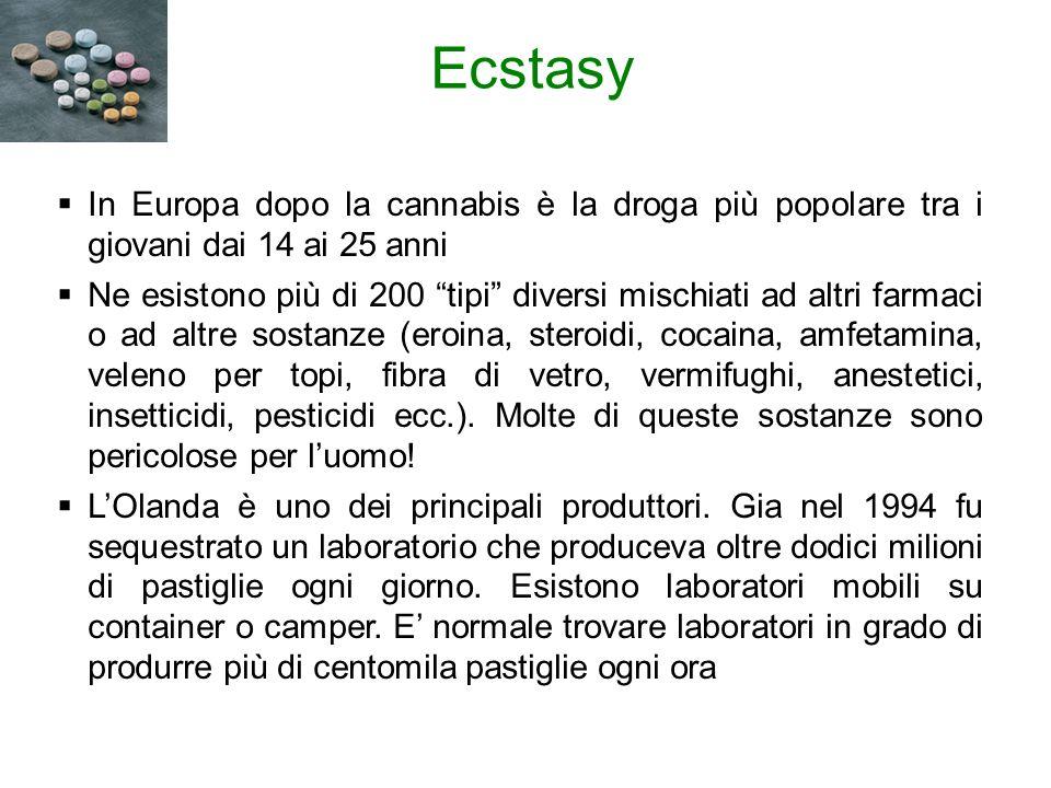 Ecstasy In Europa dopo la cannabis è la droga più popolare tra i giovani dai 14 ai 25 anni.