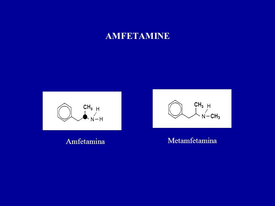 AMFETAMINE Amfetamina Metamfetamina