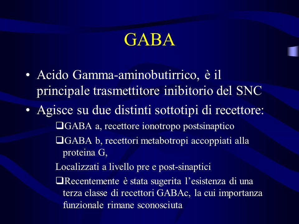 GABA Acido Gamma-aminobutirrico, è il principale trasmettitore inibitorio del SNC. Agisce su due distinti sottotipi di recettore: