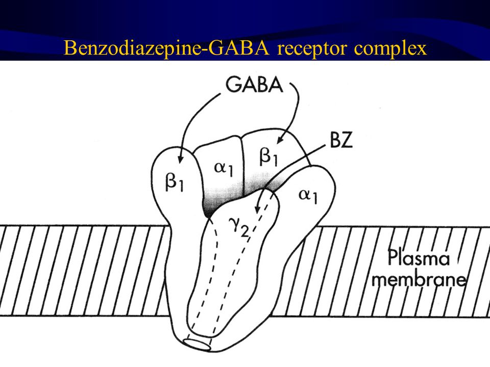 Benzodiazepine-GABA receptor complex