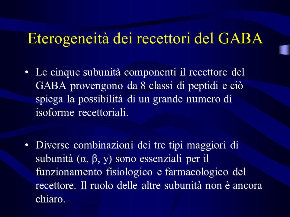 Eterogeneità dei recettori del GABA