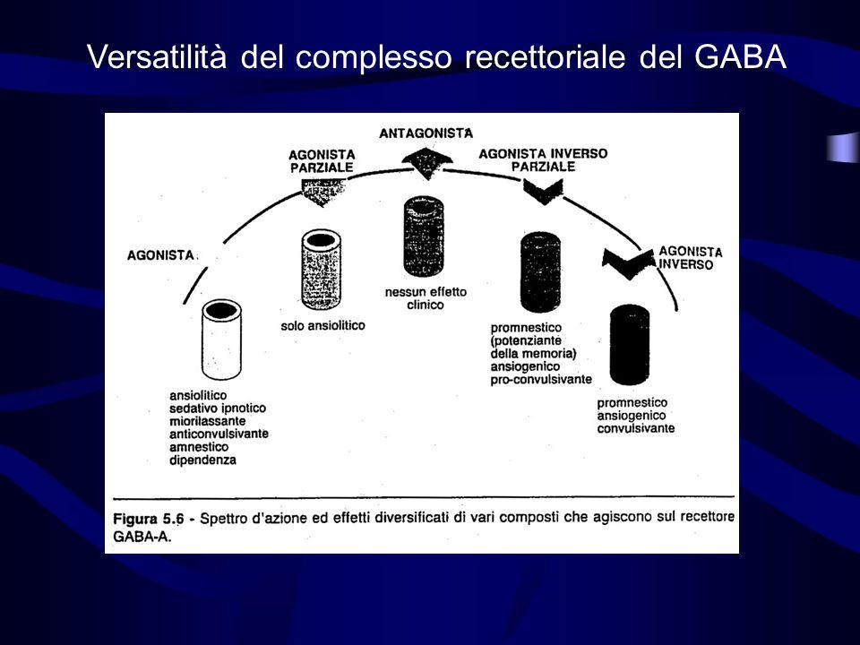 Versatilità del complesso recettoriale del GABA