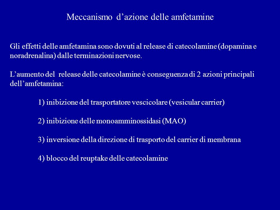 Meccanismo d'azione delle amfetamine