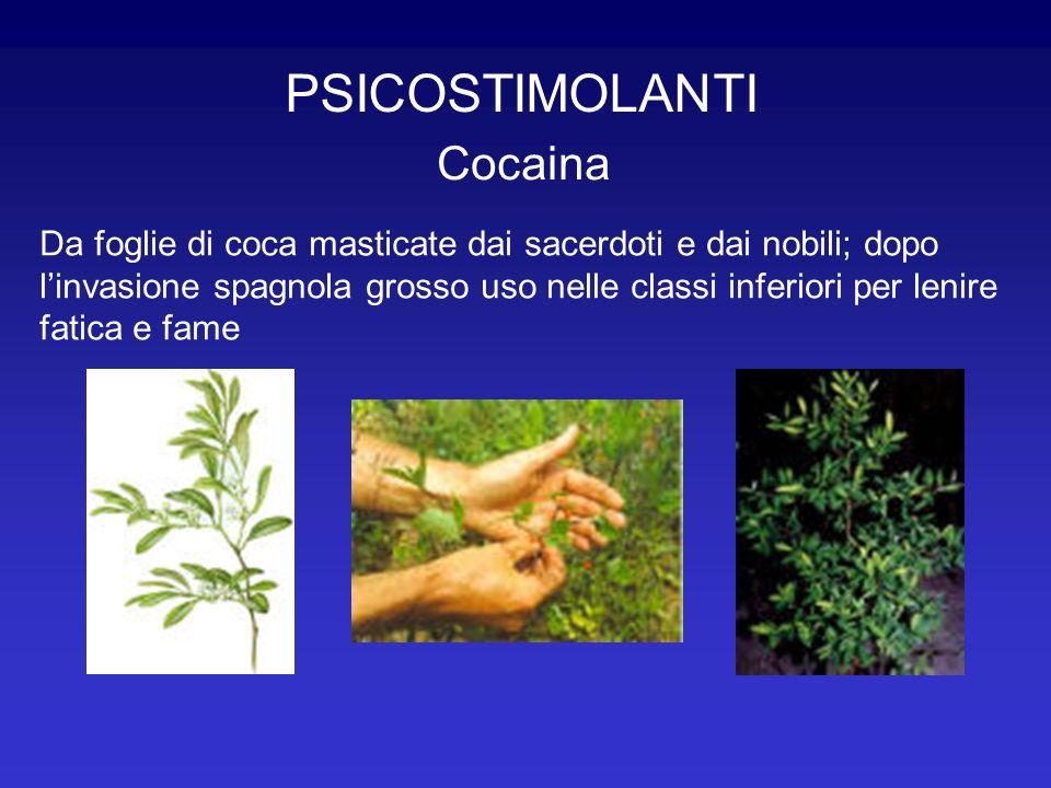 PSICOSTIMOLANTI Cocaina