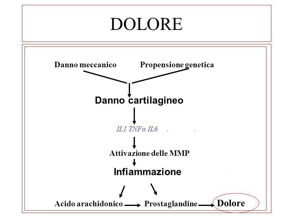 DOLORE Danno meccanico Propensione genetica Danno cartilagineo