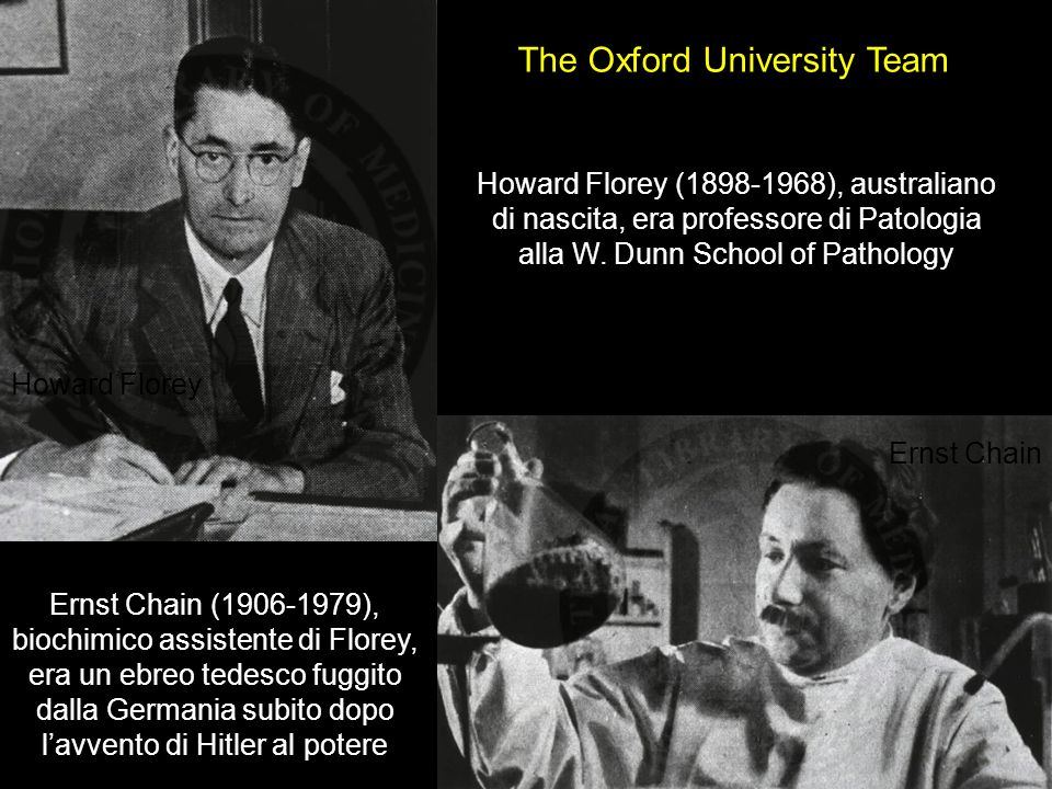The Oxford University Team