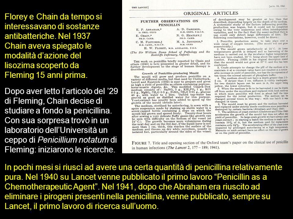 Florey e Chain da tempo si interessavano di sostanze antibatteriche