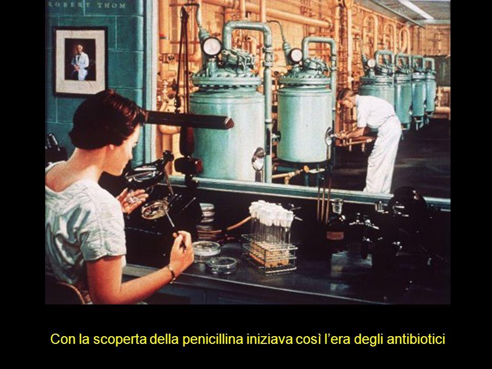 Con la scoperta della penicillina iniziava così l'era degli antibiotici