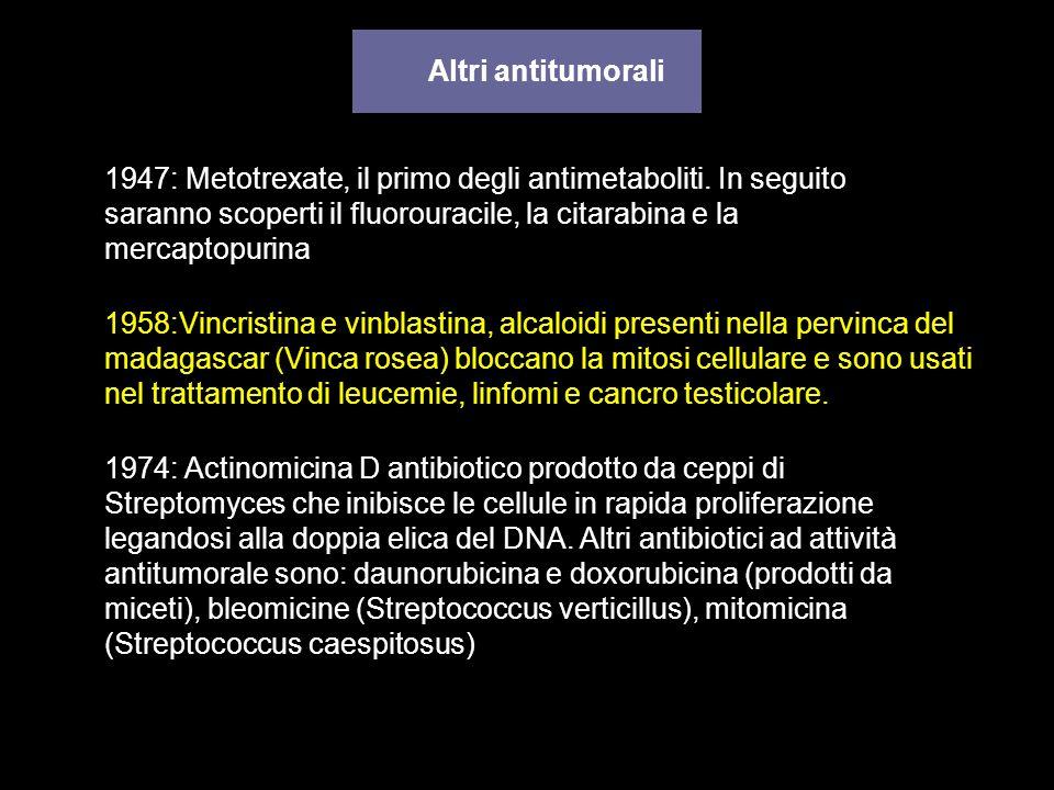 Altri antitumorali 1947: Metotrexate, il primo degli antimetaboliti. In seguito saranno scoperti il fluorouracile, la citarabina e la mercaptopurina.