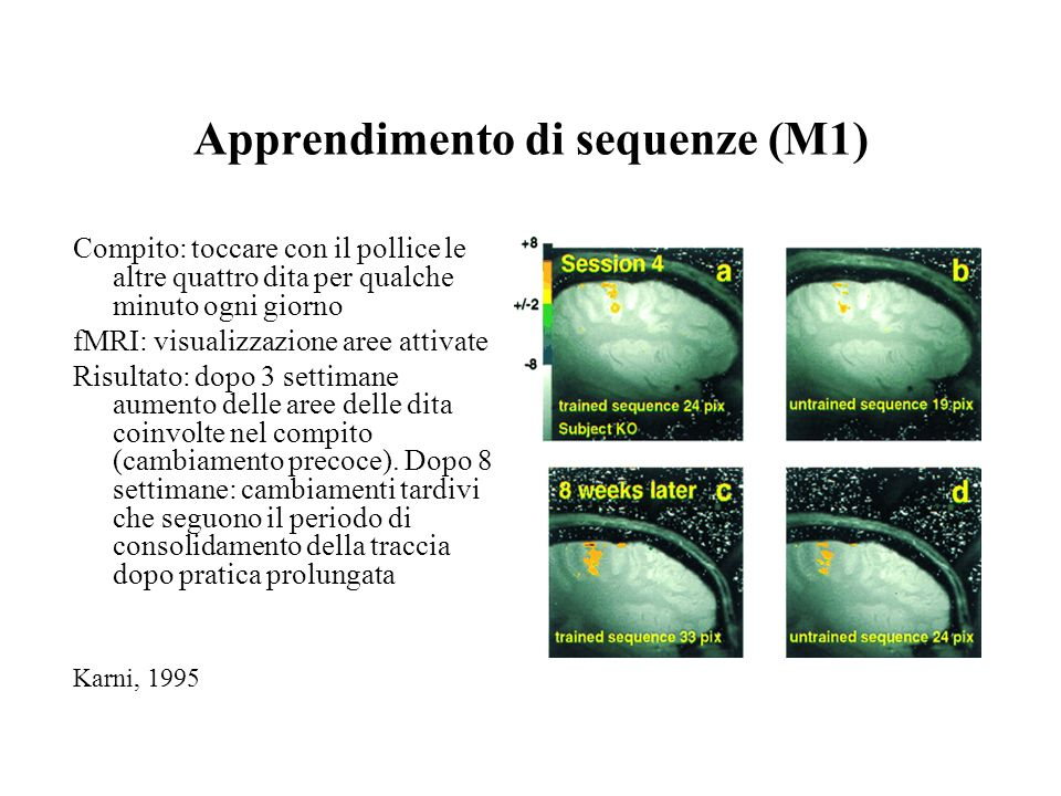 Apprendimento di sequenze (M1)