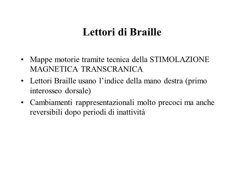 Lettori di Braille Mappe motorie tramite tecnica della STIMOLAZIONE MAGNETICA TRANSCRANICA.