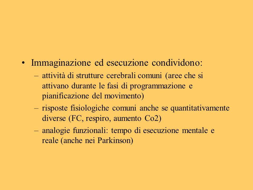 Immaginazione ed esecuzione condividono: