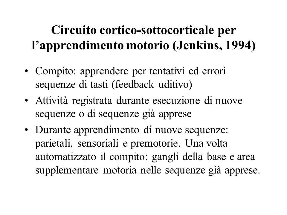 Circuito cortico-sottocorticale per l'apprendimento motorio (Jenkins, 1994)